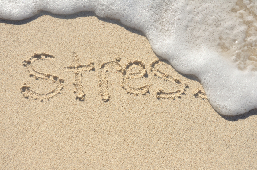 Yes! Embrace stress (and make it work for you)